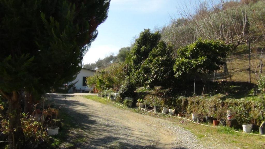 Casa singola con terreno frazione di torano c bbls - Terreno con casa ...